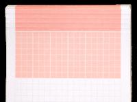 Ordner-Einlagen ROT (250 Stk)